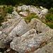 Am Abstieg von Alpe Gradisc nach Calnegia - hunderte von Steintritten