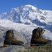 Mit Sieben-Meilen-Stiefeln auf die Berge...