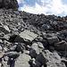 Sehr mühsamer Abstieg, zT bewegten sich auch die grossen Steine, ein Wanderstock ging hier zu bruch…