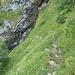 Typischer Wegabschnitt im oberen Teil des Abstiegs von der Alp Baumgarten.