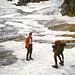 Auf dem Höllentalferner - auch wenn's nicht so aussieht: die dunkelgraue, apere Stelle  auf dem Gletscher (etwas links der Mitte oben) ist oftmals heikel, wenn Blankeis - da steil.