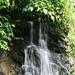 Wasserfall im Ginger Garden