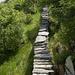 Die Polenmauer - stets etwa 2m hoch und 60cm breit