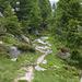 Lauschiges Wegstück zwischen Albagnohütte und Mornera