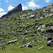 """Letzter Anstieg zum """"Sattel"""" Pt1959 oben Axalphorn"""