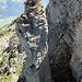 35m hoher Turm, dem droht wohl das gleiche Schicksal wie: Vreneli/ Dünne Fluh [tour36690 Reconnaissance Vreneli / Dünne Fluh]… Und zwar der Einsturz, so krumm wie das Teil ist…