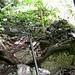 Der Aufstieg aufs Plateau der Musenalp hat beinahe Klettersteigcharakter, ist aber gut gesichert!