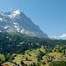 Die Eigernordwand von Grindelwald aus gesehen.