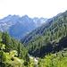 Auf der Höhe des kleinen Stausees erreiche ich den Fahrweg zu den Alpen im Saflischtal
