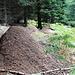 Drei gewaltige Ameisenhaufen, in der Umgebung gab es nicht eine einzige Fichtennadel mehr auf dem Boden