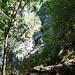 Val d'Efra - am Aufstieg zur Alpe dell'Efra