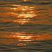 Lichtreflexe auf dem Wasser