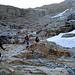 Prima poco del ghiacciaio Gran Paradiso.