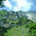 Blick vom Forenstock Richtung Gipfel