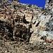 Der Einstieg in den Felsaufschwung oberhalb der Geröllhalde hinauf zur Hohenwartscharte (3182m). DIe ersten 10m geht es über eine Leiter am Fels hinauf, danach folgt man dem Klettersteigähnlichen Weg hinauf zur Scharte welcher mit dicken Seilen gesichert ist.