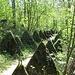 Barrière anti-chars à la Serine