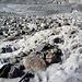 Viel milchiger könnte Gletschermilch kaum sein
