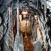 Tunnelpassage<br /> - im Sommer angenehm feucht und kühl <br /> - im Winter dagegen Durchgang erschwert
