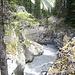 Auch da gings drüber: Der Tumbling Creek