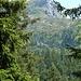 Die Landschaft wird etwas alpiner