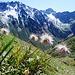 Abstieg von der Seetalhütte mit Blick in die Alp Sardasca