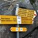 <b>A quota 2160 m abbandono la strada asfaltata e prendo il sentiero a destra, dapprima in discesa, poco dopo pianeggiante.</b>
