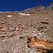 la foto mostra che il sentiero è al momento visibile,mentre la segnaletica a vernice...rara: si nota la roccia bianca,quella più superiore,che si taglia sempre su sentiero,verso sinistra