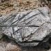 man findet viele schöne Steine am Weg