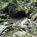 """An dieser Quelle wird ein Bach geboren, """"Glingabrunnen"""" mit Wasser vom Brandner Gletscher"""