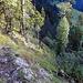 Aufstieg Richtung Witbode Pt1505