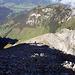 Blick zurück vom Gipfel, steiler aber gut zu machender Schlussaufstieg