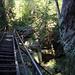 Treppen auf dem Malerweg hinunter ins Kirnitzschtal (Wegabschnitt - T3)