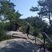 auf dem Gratweg über die Ausläufer der Schrammsteine