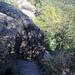 teilweise ziemlich steile Naturtreppen