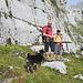 Meine drei Berg-Gschpändlis Nico, [u alpinpower] und Lisbeth