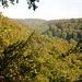 Endlose Waldeinsamkeiten im Süntel, fernab von allem !