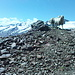 Schafe auf dem Gipfel