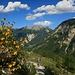Abstieg durchs Marbachtal