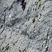 Andere Kletterer am Mauerläufer