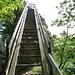 ... und nochmals eine steile Treppe, welche zum Aussichtspunkt des Guggershörnli führt