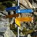 VAVM und eine Vielfalt von Wanderwegen auf der Alpe Masnee