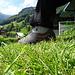 Stillleben mit schmerzendem Schuh und Grüncontainer