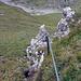 Blick zurück, im Abstieg wohl etwas kniffliger, ausser am geht Rückwärts dem Seil entlang hinunter…