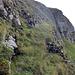 Doch das Band wurde immer schmaler und gleich rechts davon geht es senkrecht über eine Felswand hinunter… Dies ist nicht alpinbachi's  bevorzugtes Gelände (-;