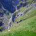 Aufstieg im Revier der Gämsen – unterhalb Luegboden