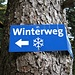 Benutzt man den Winterweg...verpasst man unter Umständen den Abzweig zum Burgberger Hörnle!!!