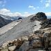 Noch immer nicht am Gipfel... aber bald. Ein weiterer kurzer Gletscherteil führt zum Steinhüshorn.