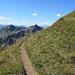 Gipfelanstieg zum Zafernhorn