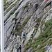 Klettersteig, heute gut besucht