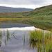Oben auf dem Kahlfjäll hat es wiederum viele kleine Seen